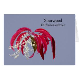 Cartão Novembro - Sourwood