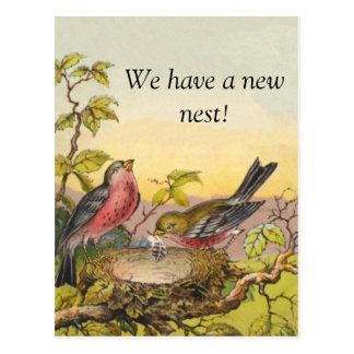 Cartão novo do endereço dos pássaros do