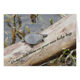 Cartão novo pintado bebê do bebé da tartaruga