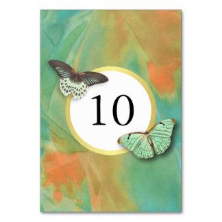 Cartão Número da mesa de cores do sudoeste das borboletas