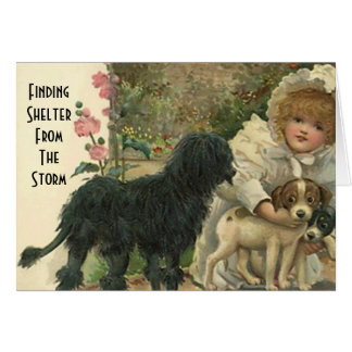 Cartão O abrigo do salvamento do gato do animal de