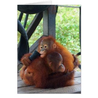 Cartão O animal abraça o bebê do orangotango