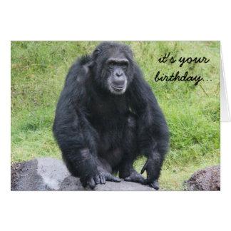 Cartão O aniversário engraçado do chimpanzé, quer monkey