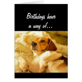 Cartão O aniversário engraçado que Sneaking acima em você