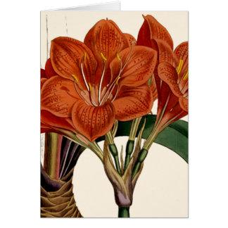 Cartão O bolsa botânico de Curtis da flor