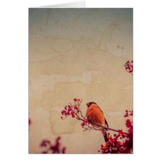 Cartão O Bullfinch em Rowan Textured