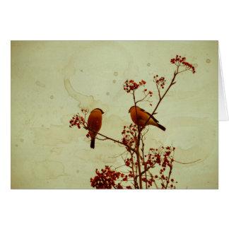 Cartão O Bullfinch em Rowan Textured 2
