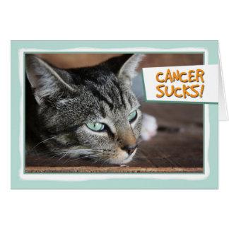 Cartão O cancer suga, gato triste