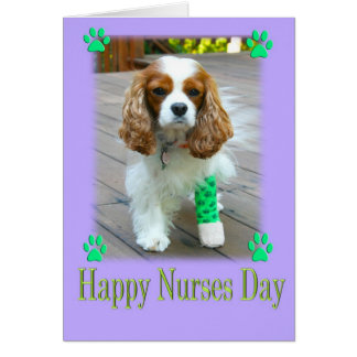 Cartão O dia feliz das enfermeiras com Spaniels enfaixou