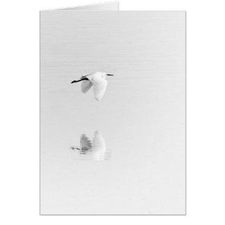 Cartão O egret branco voa sobre a lagoa