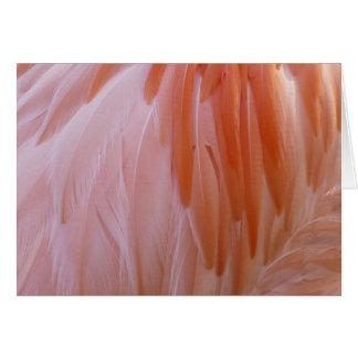 Cartão O flamingo empluma-se a natureza abstrata do rosa