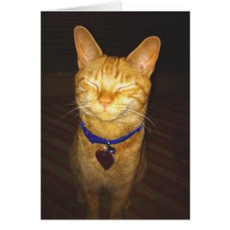 Cartão O gatinho faz um aniversário do desejo