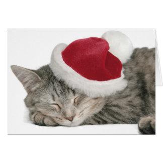 Cartão O gato cinzento dorme em um boné de ano novo