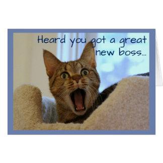 Cartão O gato da aposentadoria está muito feliz