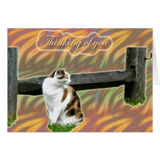 Cartão O gato do gatinho da chita que pensa de você carda