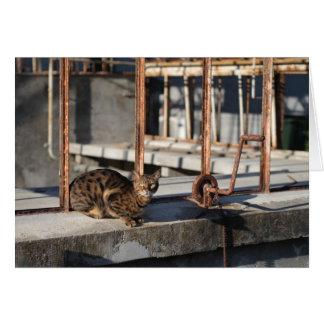 Cartão O gato oxidado