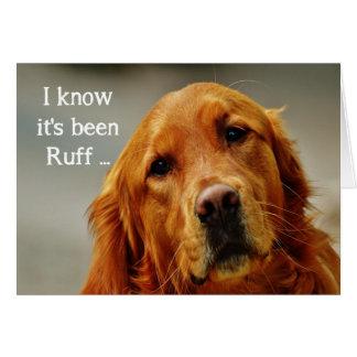 Cartão O incentivo obtem o cão bonito bom do golden