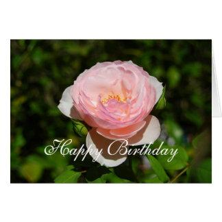 Cartão O inglês do rosa do feliz aniversario aumentou