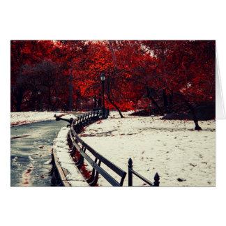Cartão O inverno encontra a queda no Central Park, NYC