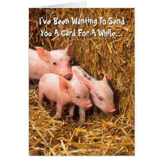 Cartão O leitão leitão dos porcos que pensa de você carda