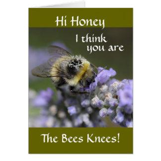 Cartão O mel A001-30 você é os joelhos das abelhas: