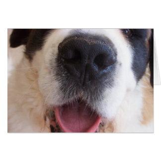 Cartão O nariz de Ruthie