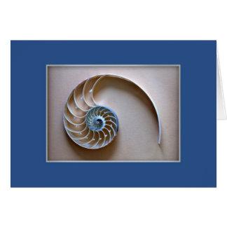 Cartão O nautilus Shell secciona