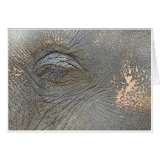 Cartão O olho do elefante