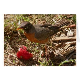 Cartão O pássaro adiantado obtem…