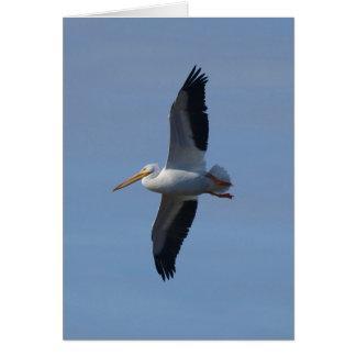 Cartão O pelicano branco toma o vôo
