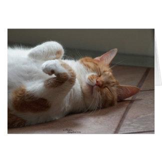 Cartão O pensamento adorável do gato de você carda