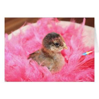 Cartão O pintinho cor-de-rosa do bebê cumprimenta o
