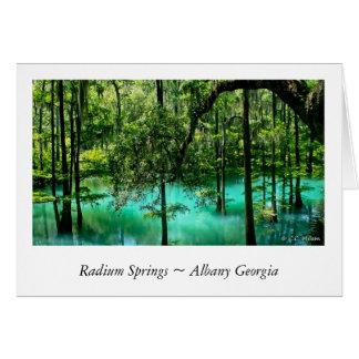 Cartão O rádio salta ~ Albany Geórgia