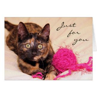 Cartão O salvamento Tortie do gato de Greyfoot apenas