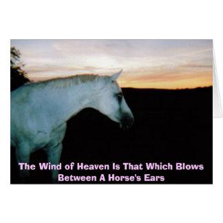 Cartão O vento do céu