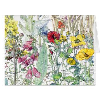 Cartão O Wildflower botânico do trevo do vintage floresce