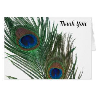 Cartão Obrigado branco bonito do casamento do pavão você