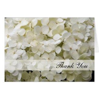 Cartão Obrigado branco do Hydrangea você