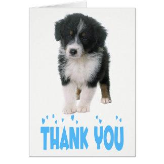 Cartão Obrigado cão de filhote de cachorro australiano do