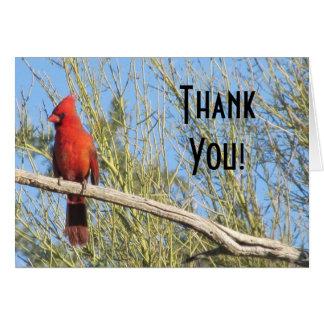 Cartão Obrigado! Cardinal