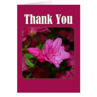 Cartão Obrigado cor-de-rosa da azálea você