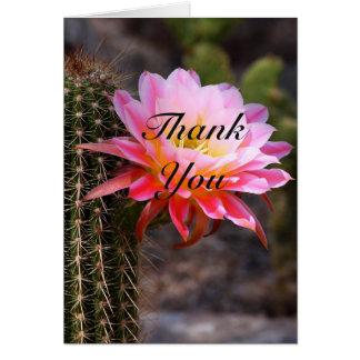 Cartão Obrigado cor-de-rosa da flor do cacto você