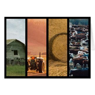 Cartão Obrigado da colagem da fazenda de gado