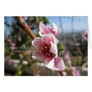 Cartão Obrigado da flor do pêssego você