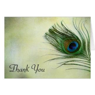 Cartão Obrigado da pena do pavão do vintage você