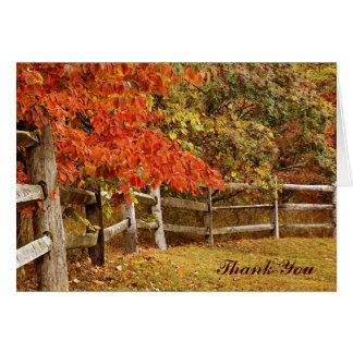 Cartão Obrigado das cores do outono você