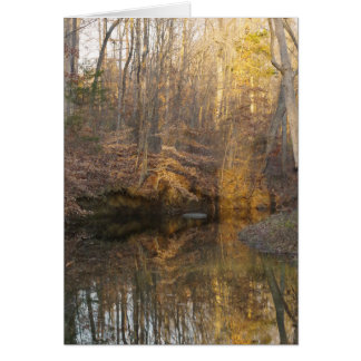 Cartão Obrigado do córrego da água da natureza você