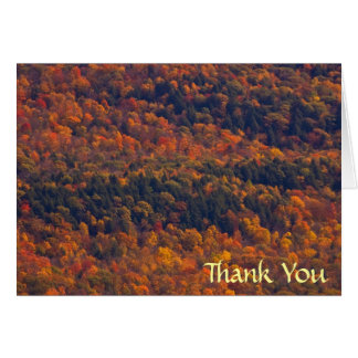 Cartão Obrigado do esplendor da queda você