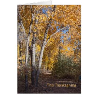 Cartão Obrigado do negócio das madeiras do outono você