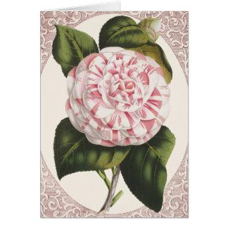 Cartão Obrigado elegante da camélia do vintage você